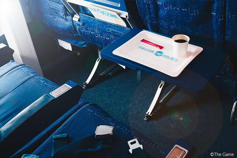 avion-4---copyright.jpg
